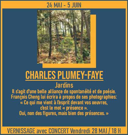 charles plumey faye